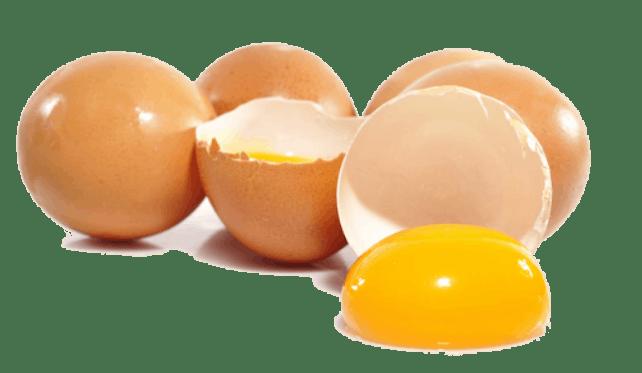 ไข่ไก่ มังสวิรัติ AKARA EGGOLOGY